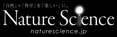 NatureScience burner